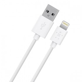 BELKIN F8J023BT04 Lightning to USB Charge Sync Cable 1.2 M, white